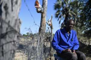 Ishmael Simasiku, a farmer whose crops have been repeatedly destroyed by elephants, says the sports hunting ban in Botswana made his life worse.  By MONIRUL BHUIYAN (AFP)