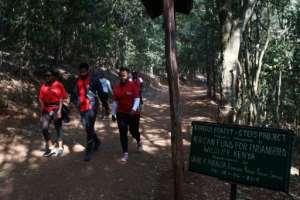 Joggers encounter bushbucks, hornbills and Syke's monkeys.  By SIMON MAINA (AFP)