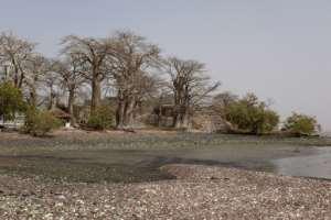 Kunta Kinteh island, on the Gambia River