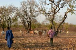 Landowners and herders say the project has helped to avoid conflict between the communities.  By Sia KAMBOU (AFP)