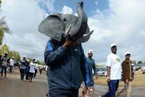 Landlocked Botswana has Africa's largest elephant population and wildlife is a major pillar of the country's tourism industry -- here, a man wears an elephant mask on a 2017 march in Gaborone to boost awareness on wildlife protection.  By MONIRUL BHUIYAN (AFP/File)