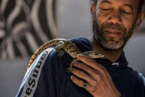 Mamdouh Hassan's father taught him how to raise and tame baby crocodiles.  By Khaled DESOUKI (AFP)