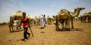 Many nomads hail from the Arab tribes who supported Omar al-Bashir's brutal war against ethnic African rebels in Darfur that broke out in 2003.  By ASHRAF SHAZLY (AFP)
