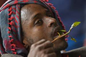 Many in Ethiopia see khat chewing as a cultural activity rather than a societal problem.  By MICHAEL TEWELDE (AFP)