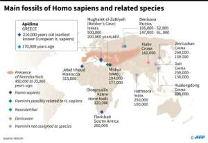 Main fossils of Homo sapiens and related species.  By Valentina BRESCHI (AFP)