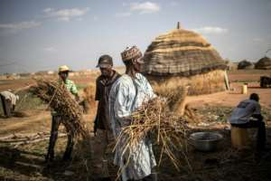 Men rebuild a hut at a camp in Dosso. The nomadic lifestyle is highly vulnerable to climate change, especially altered rainfall patterns.  By Marco LONGARI (AFP)