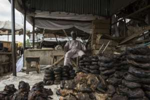 Only a few merchants remaion at the once-teeming fish market at Maiduguri, the capital of Borno state and major trading hub.  By STEFAN HEUNIS (AFP)