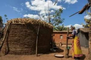 Patricia Chakwera, the sister in-law of Malawian presidential candidate Lazarus Chakwera, pounds groundnuts of which the powder is used for seasoning vegetables.  By AMOS GUMULIRA (AFP)