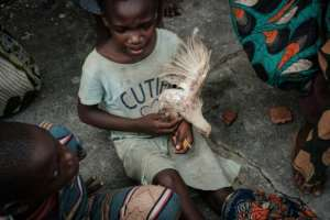 Precious bird: Nine-year-old Emilia Joao holds a chicken in the Samora M. Machel secondary school in Buzi -- an emergency shelter for flood victims. By Yasuyoshi CHIBA (AFP)