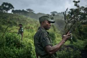 Rangers from Kahuzi-Biega National Park visit the devastated areas of the park.  By ALEXIS HUGUET (AFP)