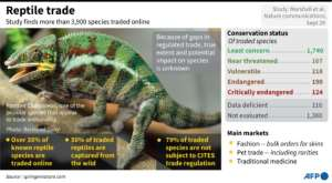 Graphic on the findings of a study on the traffic in endangered reptiles..  By John SAEKI (AFP)