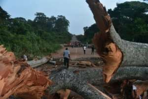 Roads around Daoukro were blocked with tree trunks.  By SIA KAMBOU (AFP)
