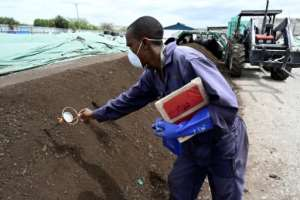 Sanergy transforms waste from Mukuru into a safe organic fertiliser that is sold on to farmers.  By SIMON MAINA (AFP)