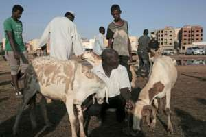 Since the last devaluation of the Sudanese pound in October by the then authorities the currency has plunged by a further 70 percent against the dollar on the black market.  By Jean Marc MOJON (AFP)