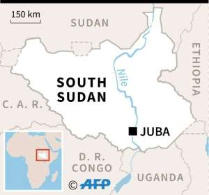South Sudan gained independence from Sudan in 2011, but two years later plunged into a civil war after rebel leaders fell out.  By Sophie RAMIS (AFP)