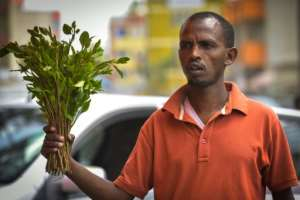 Sporadic campaigns by local civil society groups have failed to result in a ban on khat like those imposed in Britain and the United States.  By MICHAEL TEWELDE (AFP)
