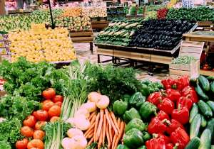 Solutions To Nigeria's  Food  &  Agricultural  Problems
