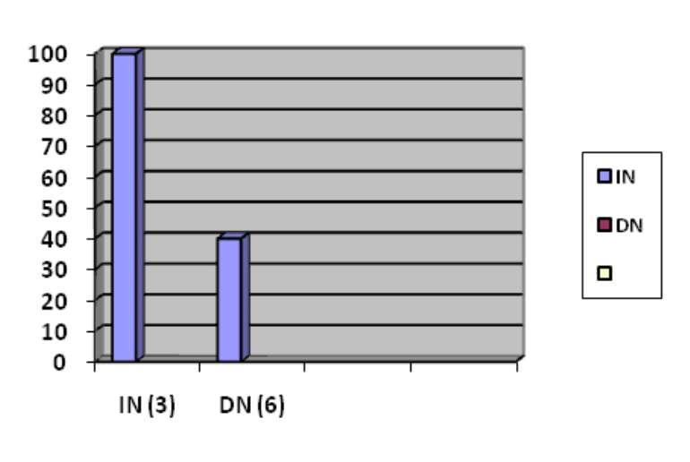 Magnitude (weight)