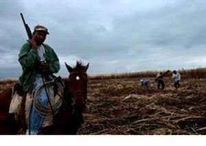 Armed guard in a sugar cane field in the Dominican Republic. Credit: Walter Astrada