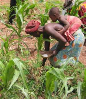 Embrace Insurance Products To Cushion Farmers