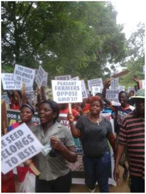 African Civil Society Slams Monsanto Junk GM Maize Deal