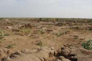 Demystify Land Acquisition In Ghana - Says Elite CEO