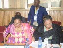 First Lady Participates In Steering Committee Meeting Of OAFLA