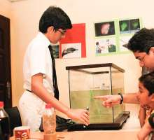 DPSI Students Showcase Talent In Science And Technology