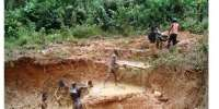 Illegal miners 2014