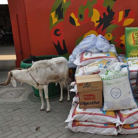 DSC 0258.MRS. MATILDA AMISSAH-ARTHUR DONATES FOOD STAFF AND TWO SHEEPS TO BASICS CENTRE  (2)