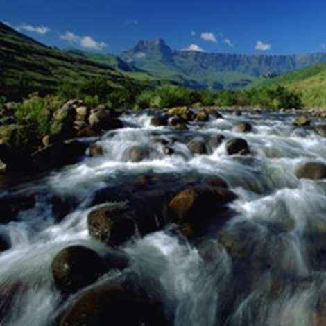 A stream in the uKhahlamba/ Drakensberg Park
