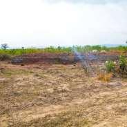GENUINE ESTATE AFIENYA LANDS FOR SALE