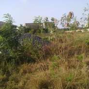 Plot of land for sale at East Legon