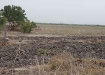 Land at BUEKO (Tsopoli) for sale