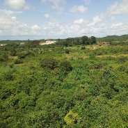 10 Plots of Land for sale at Mankessim