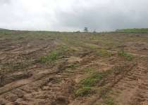 Lands For Sale At Pokuase Hills Near Akatapor