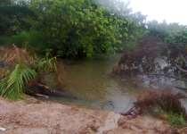 30 acres farm land for sale near adawso akuapim