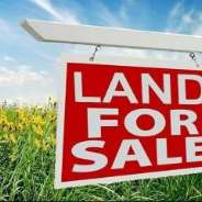 VERY CHEAP FARMLANDS FOR SALE IN VOLTA REGION