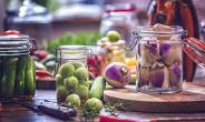 Four Interesting Techniques To Preserve Food Without Refrigeration
