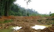 AFR100 initiative celebrates 111 million hectares of commitments to restore forests