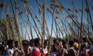 YouTube Lifts Swazi Bare-Breasted Dancer Restrictions