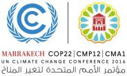 Marrakech COP22: 'tis Time For Africa's Voice