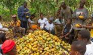 Farmer Threatens To Invoke Curses On Nana Addo