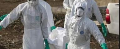 Ebola: The Death From The Jungle