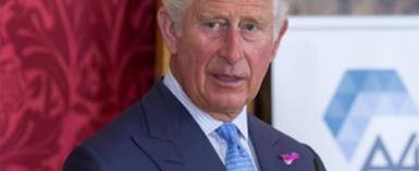Prince Charles's Princely Visit