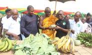 Obuasi Municipal Assembly Honours Gallant Farmers
