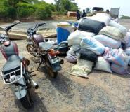 Volta Region: GHC300,000 Worth Of Cannabis Impounded