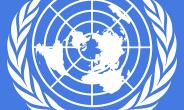 Seventy Years of Aspiration: Rights Charters and the Universal Declaration of Human Rights
