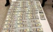$143,000 Cash Seized From Three Ghanaians In The USA