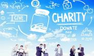 Charity Organizations Somewhat Assist Government In Its Commitments To The Public